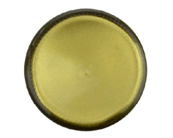 Sylmasta European Gold Paint is a light gold paint which is used in restoration and for projects which require a gold finish